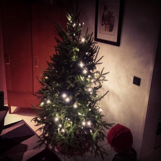 joulu, joulukuusi, ekologinen kuusi, tekokuusi, muovikuusi
