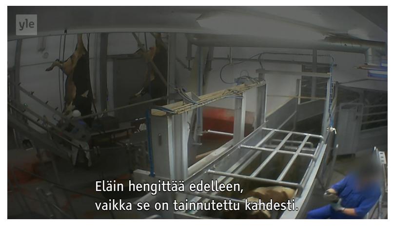 Näyttökuva 2015-11-05 kohteessa 21.42.00