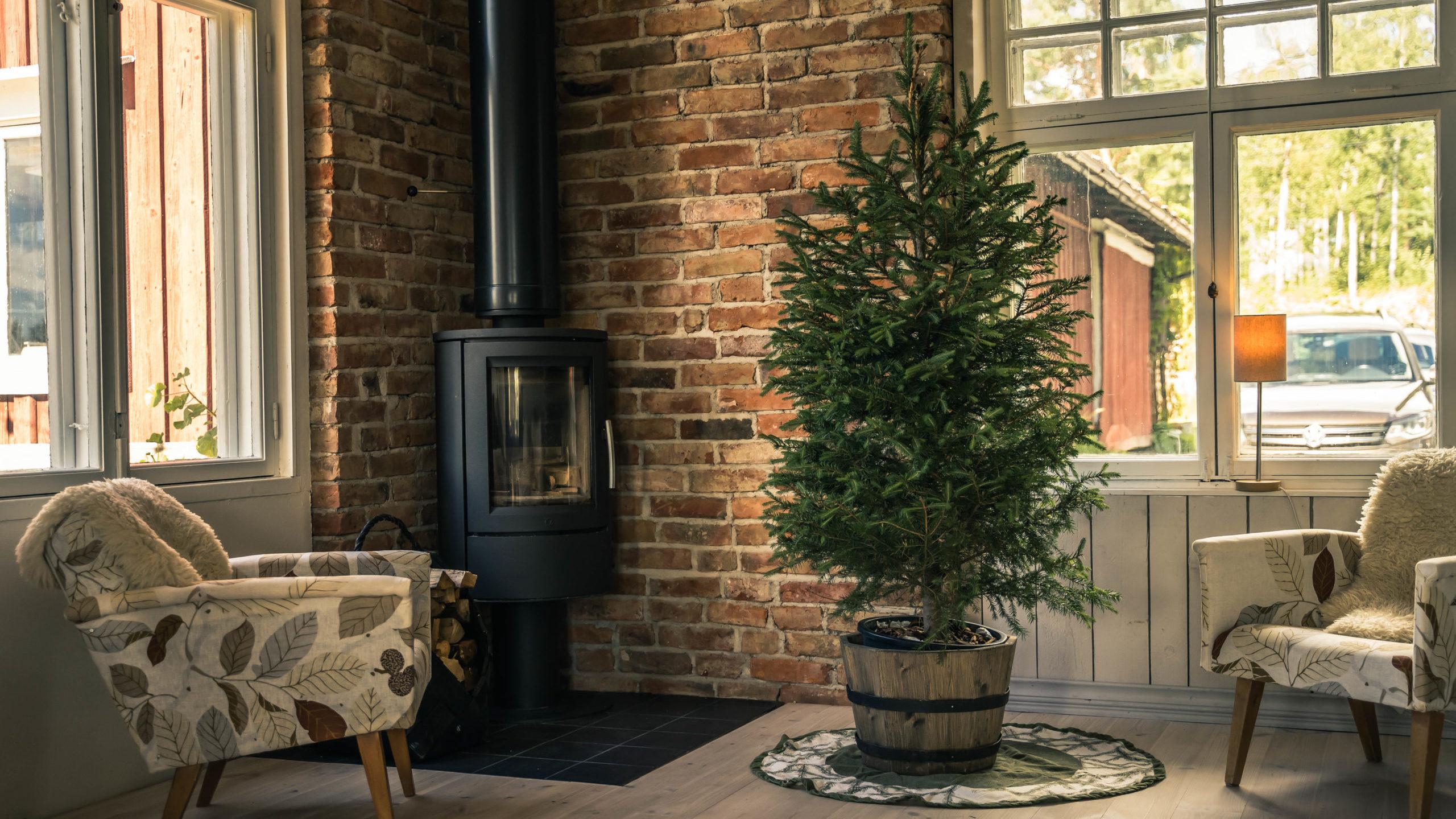 joulu, joulukuusi, ekologinen kuusi, tekokuusi, muovikuusi, vuokrakuusi