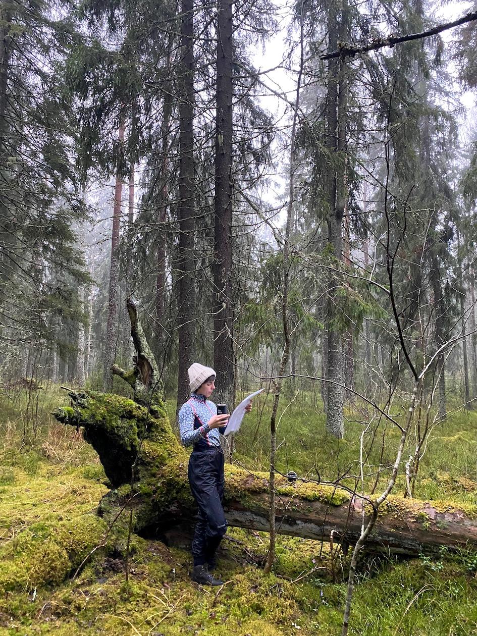 paasto, nestepaasto, metsä, trekkailu, kartta, suunnistus, terveys, Nuuksio, Vogel, A. Vogel, Vogelin paasto, intermittent fasting, pätkäpaasto